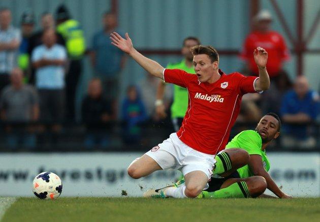 Cardiff: Puma Home Kit 2013-14