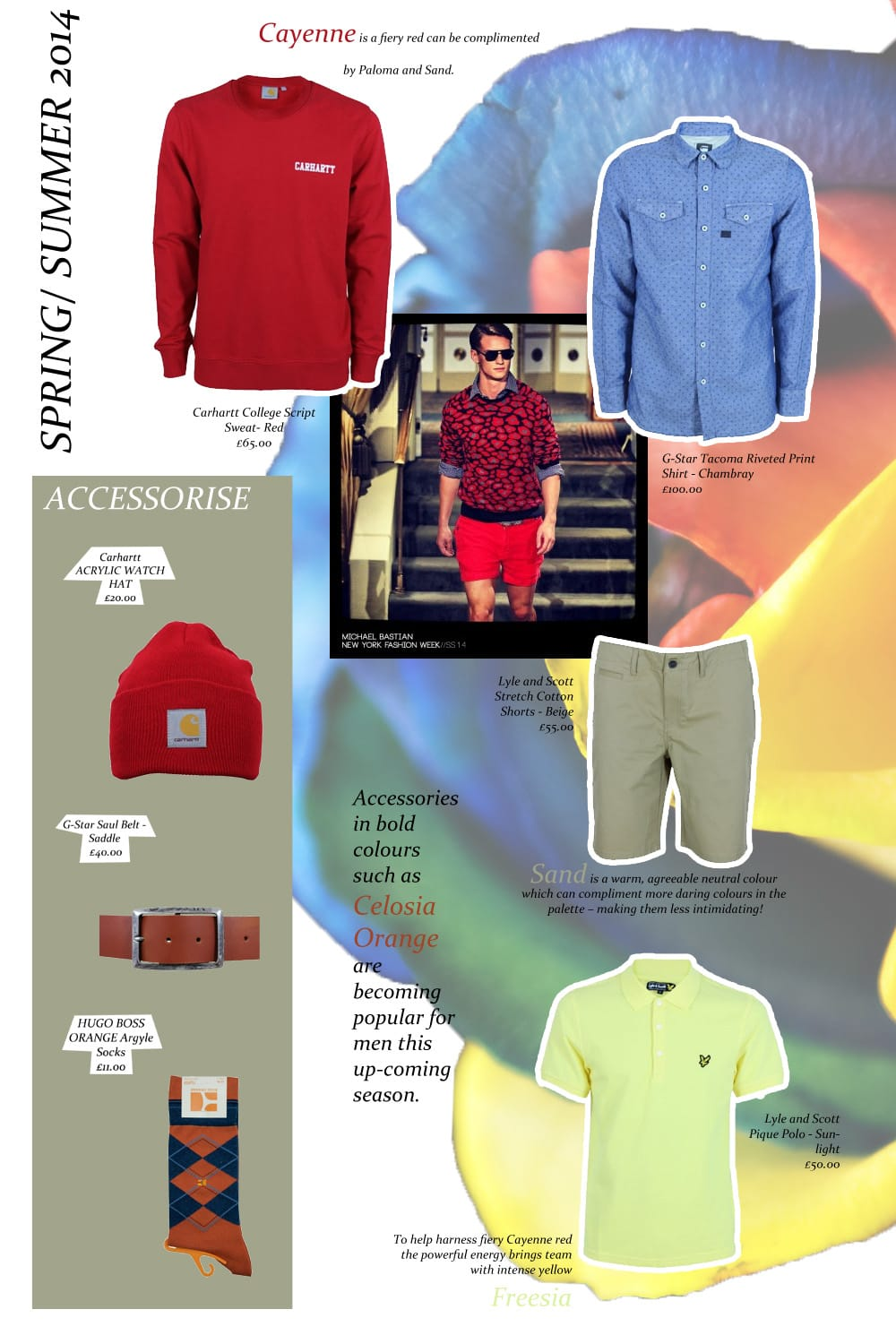223ef3f6633 Spring/Summer 2014 | Menswear Colour Trends | Northern Threads