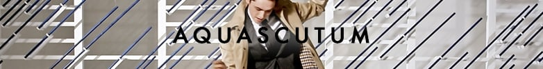 Brown Aquascutum Ties