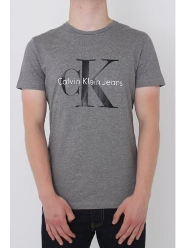 True Icon Logo T.Shirt - Grey